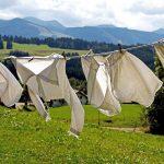kapsułki czy proszek do prania